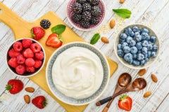 Grekisk yoghurt i bunke fotografering för bildbyråer