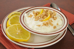 Grekisk yoghurt med citroner arkivbild