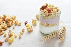 Grekisk yoghurt med frasig frukt arkivbilder