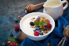 Grekisk yoghurt med granola och nya bär royaltyfria bilder