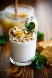 Grekisk yoghurt med honung och kex royaltyfri fotografi