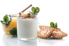 Grekisk yoghurt med honung och kex royaltyfria foton