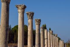 Grekiska chorinthian kolonner i rad arkivbild