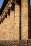 Grekiska forntida kolonner från den Hera templet i Paestum, Italien Arkivfoto