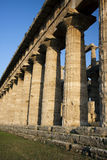 Grekiska kolonner i Paestum, Italien Arkivfoton