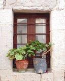 Grekland, fönster och blomkrukor Arkivbild