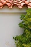 Grekland Vägg med olivträdet och tegelplattor Arkivbild