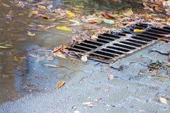 Grelha do esgoto do metal na estrada asfaltada com as folhas outonais caídas dentro Fotos de Stock