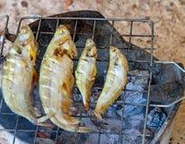 Grelhando peixes na fogueira foto de stock royalty free