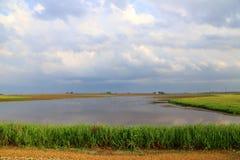 Grelle Überschwemmung Lizenzfreies Stockfoto