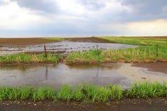 Grelle Überschwemmung Stockfotografie