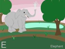 Grelle Karte des Tieralphabetes, E für Elefanten Stockfotografie