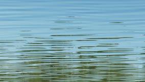 Greller Glanz auf dem Wasser stock video footage