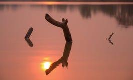 Greller Glanz von der Sonne lizenzfreie stockfotografie