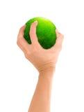 gren планета руки стоковая фотография rf