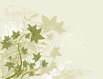 Gren background,. Modern  green background with many leafs,  illustration Stock Photos