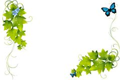 Gren leaf illustration background. Royalty Free Stock Photography