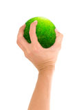 Gren planet in hand Royalty Free Stock Photography