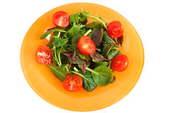 Gren salad. Green salad in orange plate Stock Photography
