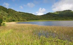 Grenada ö - storslagen Etang sjö Royaltyfri Bild