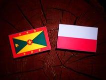Grenada flag with Polish flag on a tree stump isolated. Grenada flag with Polish flag on a tree stump stock illustration