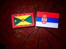 Grenada flag with Serbian flag on a tree stump isolated. Grenada flag with Serbian flag on a tree stump royalty free stock photos