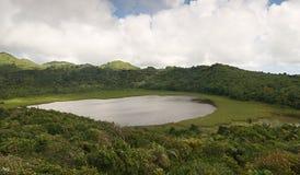 Grenada island - Grand Etang Lake. Grenada island - Grand Etang National Park - Grand Etang Lake and crater stock photos