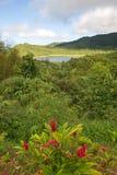 Grenada island - Grand Etang National Park - Grand Etang Lake. Grenada tropical island - Grand Etang National Park - Grand Etang Lake royalty free stock images