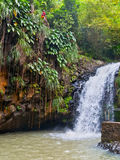 Grenada Waterfall Royalty Free Stock Images