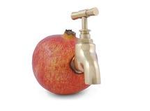 Grenade juteuse mûre avec le robinet Photos stock