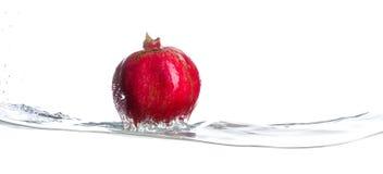 Grenade sur la surface de l'eau Araignée argentée Fond blanc Photographie stock libre de droits