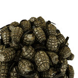 Grenades Royalty Free Stock Images