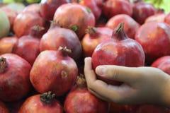 Grenades d'une cueillette de main du ` s de garçon au marché stal Photo stock