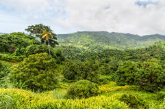 Grenadian landscape, Caribbean Stock Photography