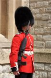 Grenadier guard. A grenadier guard at the Tower of London Stock Photos