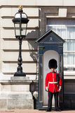 Grenadier guard Stock Images