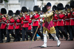 Grenadier Guards Stock Images