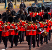 Grenadier Guards in London Stock Images