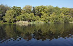 Grenadier Pond Stock Image