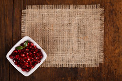 Grenadine seeds in white plate Stock Photos