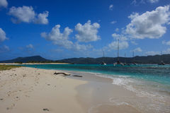 Grenadines beach. A little inhabited island in Grenadines Royalty Free Stock Image