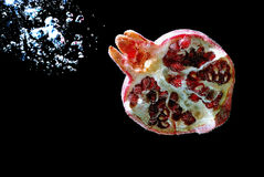 Grenat de rouge de fruit illustration libre de droits