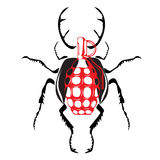 Grenat sous forme de scarabée Photos stock