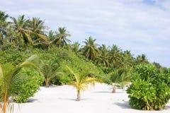 Grenery Mening over de Eilanden van de Maldiven van vliegtuig Stock Foto's