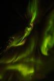 Grenlandzcy północni światła Fotografia Royalty Free