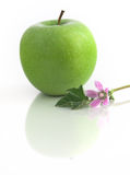Grenn Apple. Green Apple isolated in a white background with flowers and reflection Royalty Free Stock Images