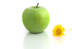 Grenn Apple Stock Photos