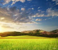 Grenn meadow in mountain Royalty Free Stock Images