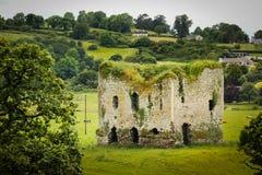 Grennan城堡 Thomastown 爱尔兰 免版税库存照片