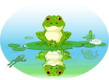 Grenouille illustration stock